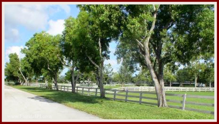 Wellington Fl Southfields equestrian homes for sale Florida IPI International Properties and Investments