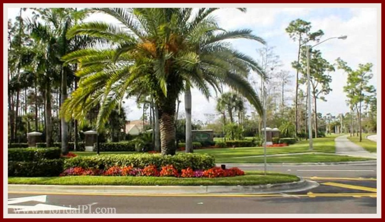 Wellington Fl Binks Forest homes for sale Florida IPI International Properties and Investments (3)