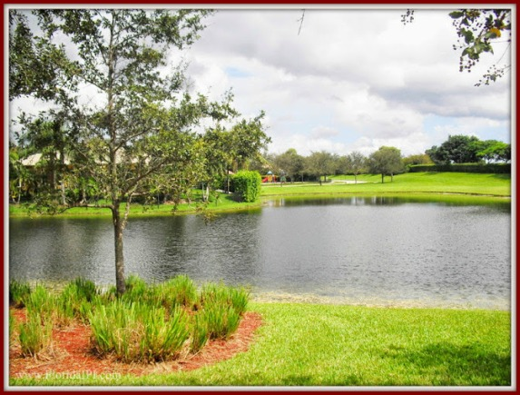 Davie Fl Imagination Farms homes for sale Florida IPI International Properties and Investments