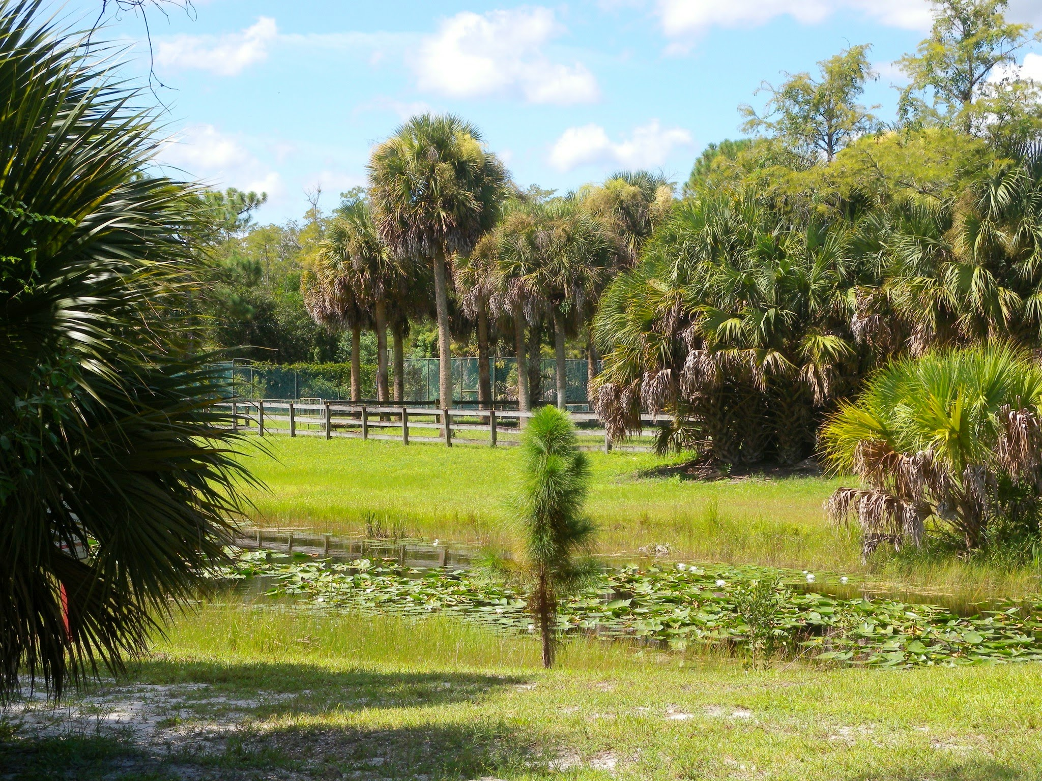 5 Acre Lots For sale in Loxahatchee FL