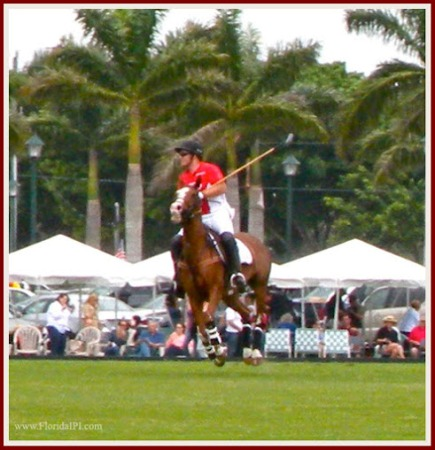 Wellington Fl Equestrian Club homes for sale Florida IPI International Properties and Investments