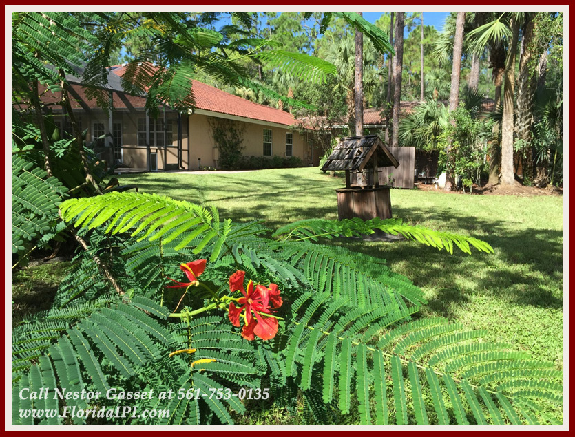 Equestrian Homes For Sale in Fox Trail Loxahatchee FL - 1154 -1092 Clydesdale Drive Loxahatchee FL 33470 - Backyard