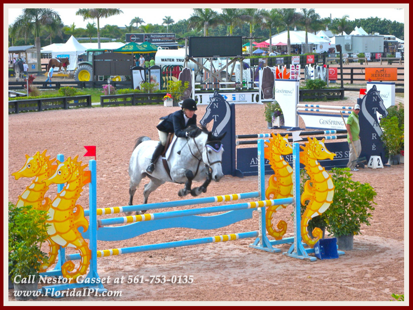 Equestrian Homes For Sale in Fox Trail Loxahatchee FL - 1154 -1092 Clydesdale Drive Loxahatchee FL 33470 - Close To Wellington Equestrian Venues