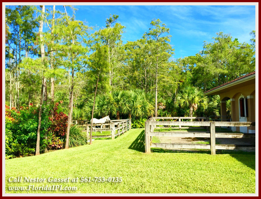 Equestrian Homes For Sale in Fox Trail Loxahatchee FL - 1154 -1092 Clydesdale Drive Loxahatchee FL 33470 - Paddock, Turnout, & Barn