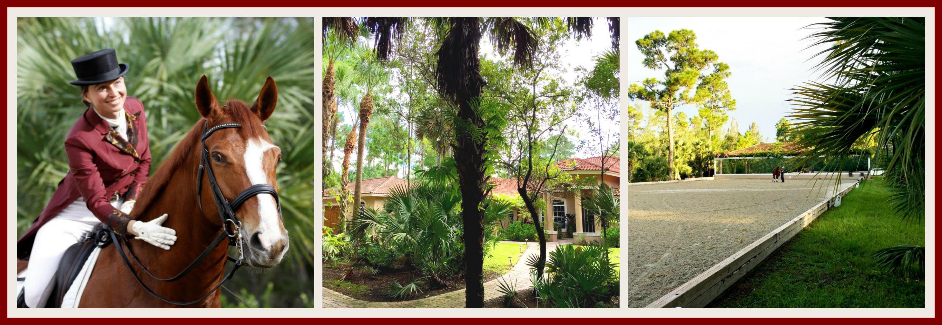 Loxahatchee FL Equestrian Real Estate Agent Testimonial Nestor Gasset